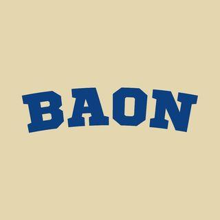 ba_on_ins